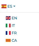 Escoger el idioma en Firmafy